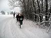Weihnachts Crosslauf Borgholzhausen 2010 (40851)