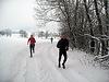 Weihnachts Crosslauf Borgholzhausen 2010 (40942)