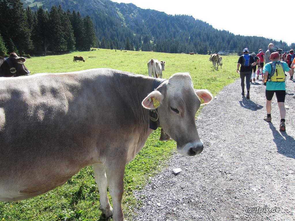 Zugspitzlauf Extremberglauf - Strecke 2011 - 28