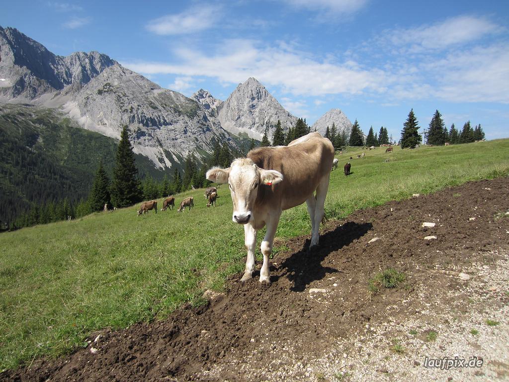 Zugspitzlauf Extremberglauf - Strecke 2011 - 67