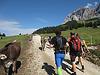Zugspitzlauf Extremberglauf - Strecke 2011 (52975)