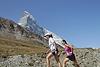 Matterhornlauf Zermatt (703) Foto