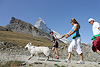 Matterhornlauf Zermatt (884) Foto