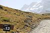 Matterhornlauf Zermatt (1203) Foto