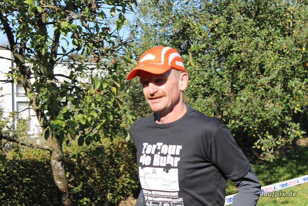 Rothaarsteig-Marathon 2011 - 313