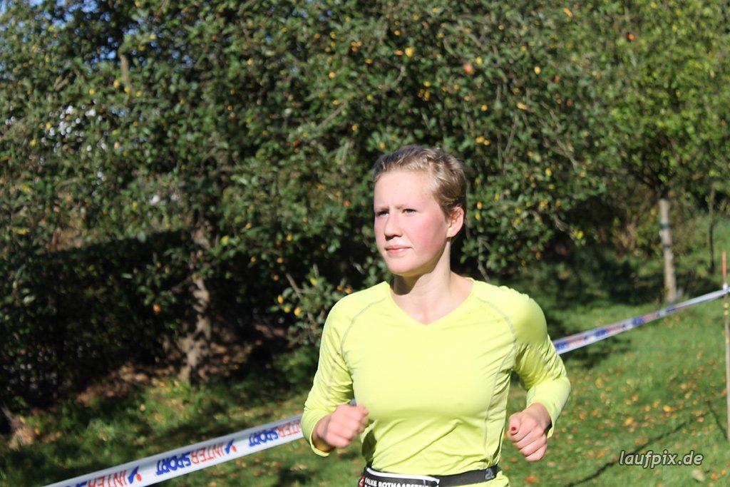 Rothaarsteig-Marathon 2011 - 315