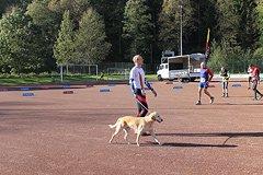Rothaarsteig-Marathon 2011 - 17