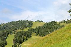 Harakiri Berglauf Mayrhofen 2012 - 13