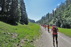 Zugspitzlauf - Strecke 2013 - 3