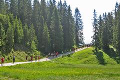 Zugspitzlauf - Strecke 2013 - 5