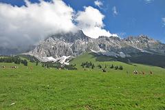 Zugspitzlauf - Strecke 2013 - 9
