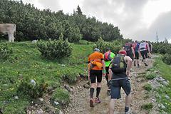 Zugspitzlauf - Strecke 2013 - 16