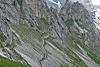 Zugspitzlauf - Strecke 2013 (75814)