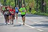 Paderborner Osterlauf 10km 2014 (85230)