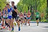Paderborner Osterlauf 10km 2014 (84887)