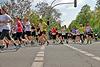 Paderborner Osterlauf 10km 2014 (85272)