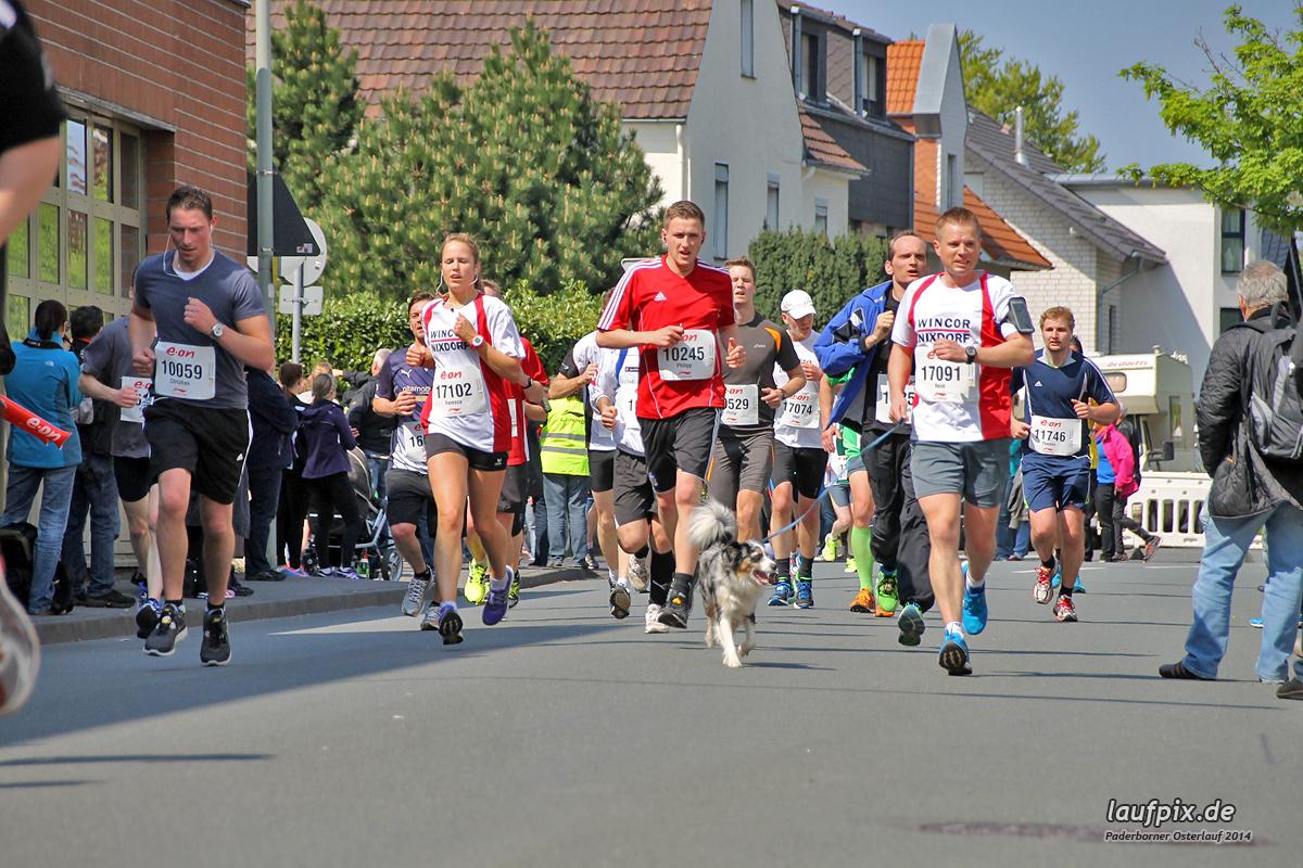 Paderborner Osterlauf 10km 2014 - 21
