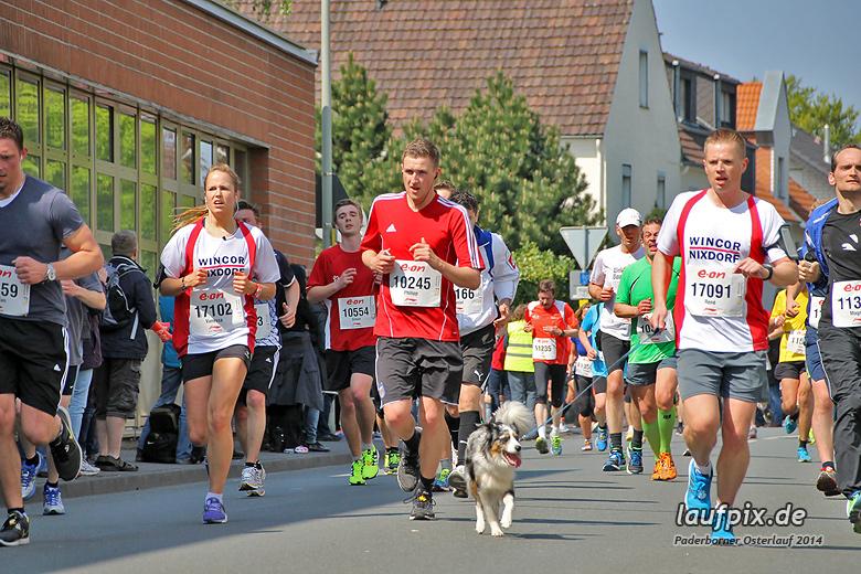 Paderborner Osterlauf 10km 2014 - 23