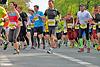 Paderborner Osterlauf 21km 2014 (86880)