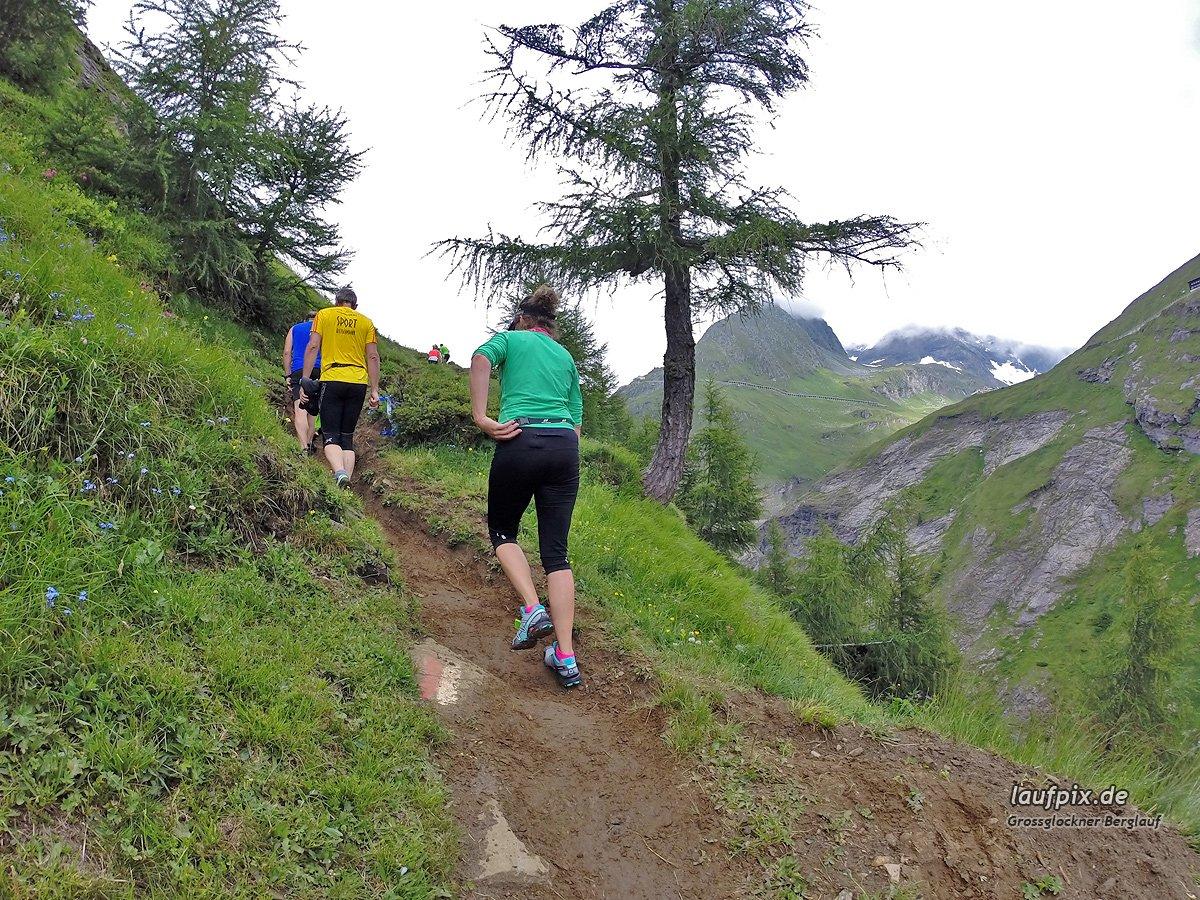 Grossglockner Berglauf 2014 - 17
