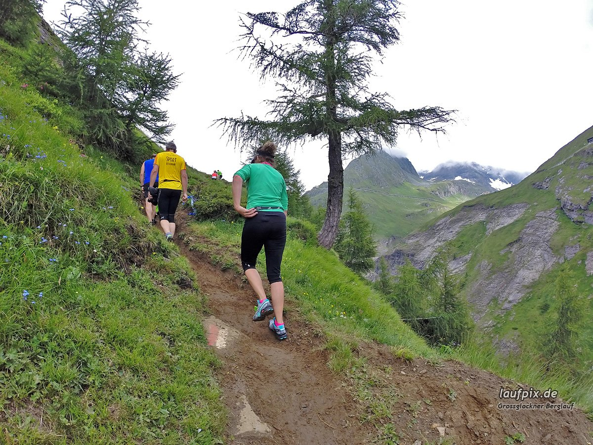 Grossglockner Berglauf 2014 Foto (17)