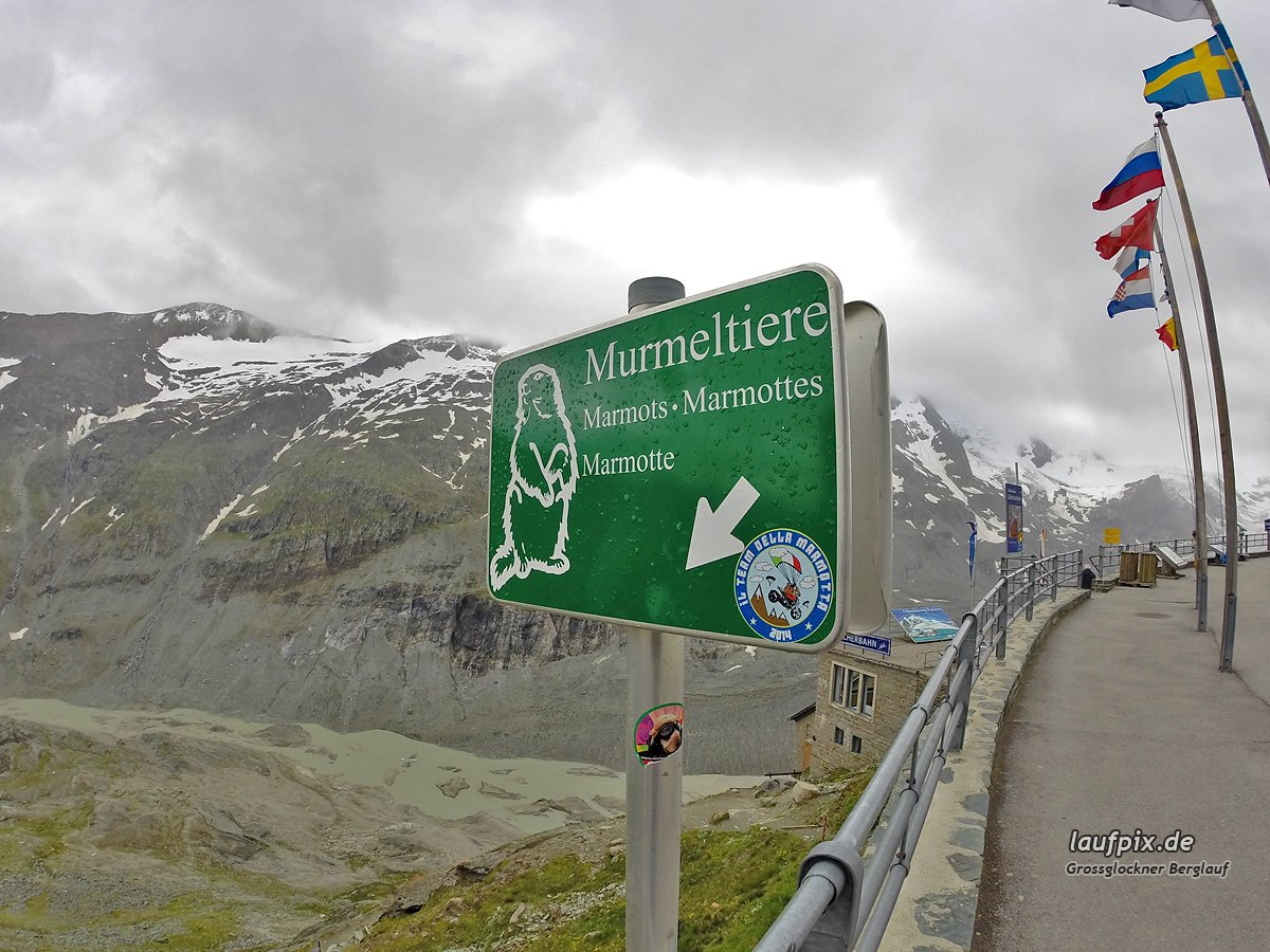Grossglockner Berglauf 2014 Foto (33)