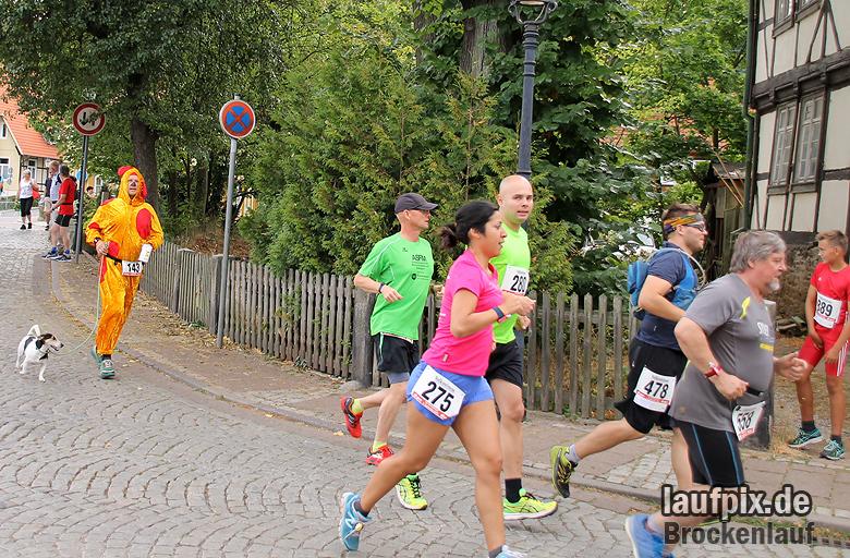 Brockenlauf 26km Start 2016 - 256