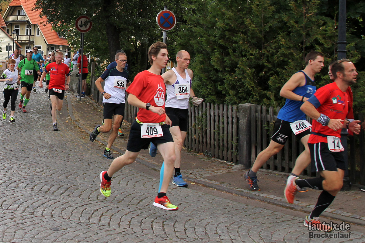 Brockenlauf 26km Start 2016 - 57