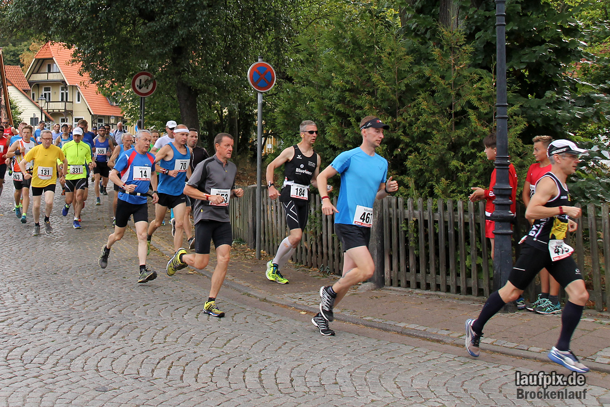 Brockenlauf 26km Start 2016 Foto (72)