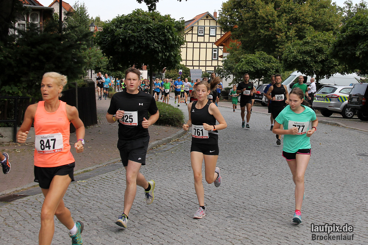 Brockenlauf 9km Start 2016 Foto (43)