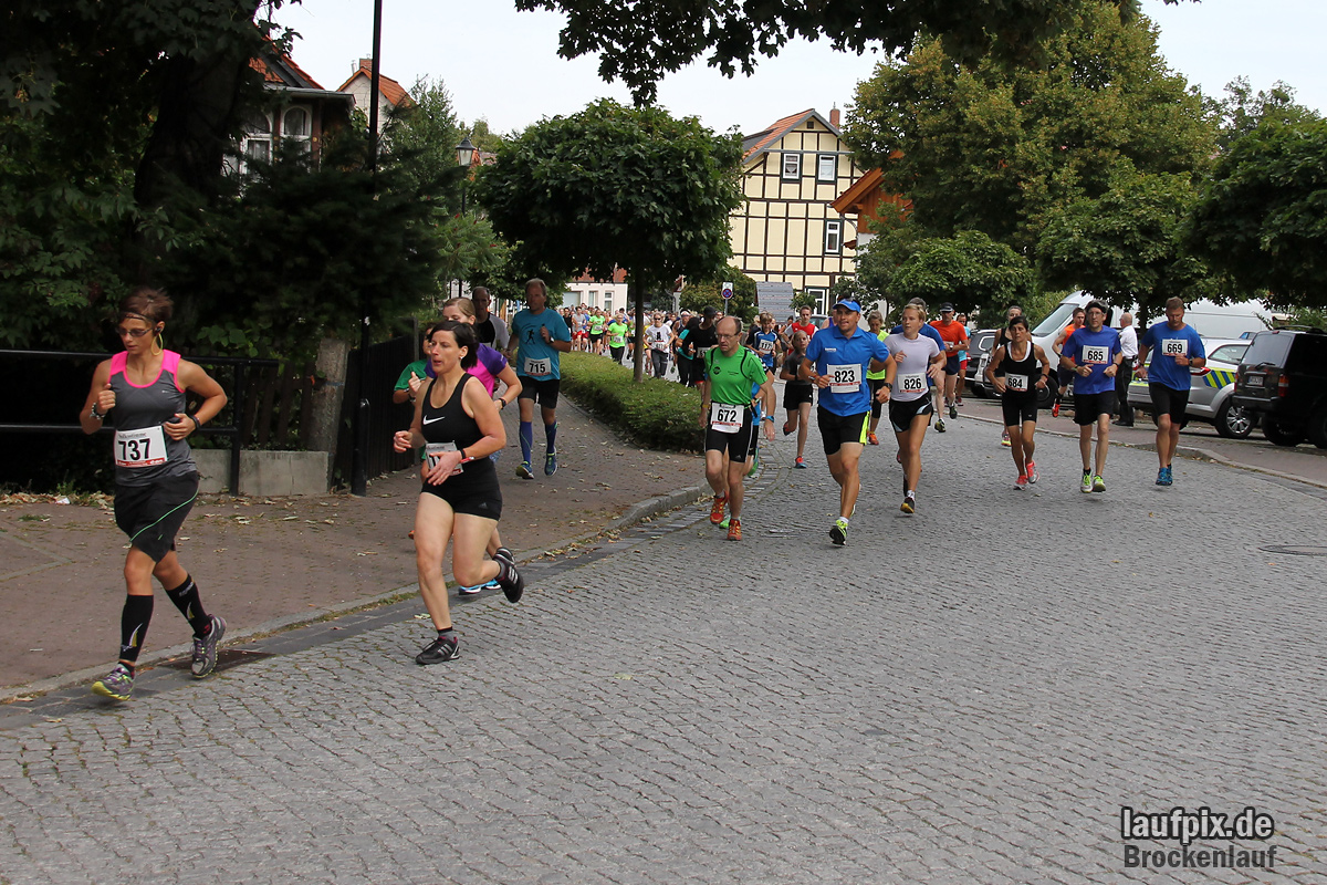 Brockenlauf 9km Start 2016 Foto (52)
