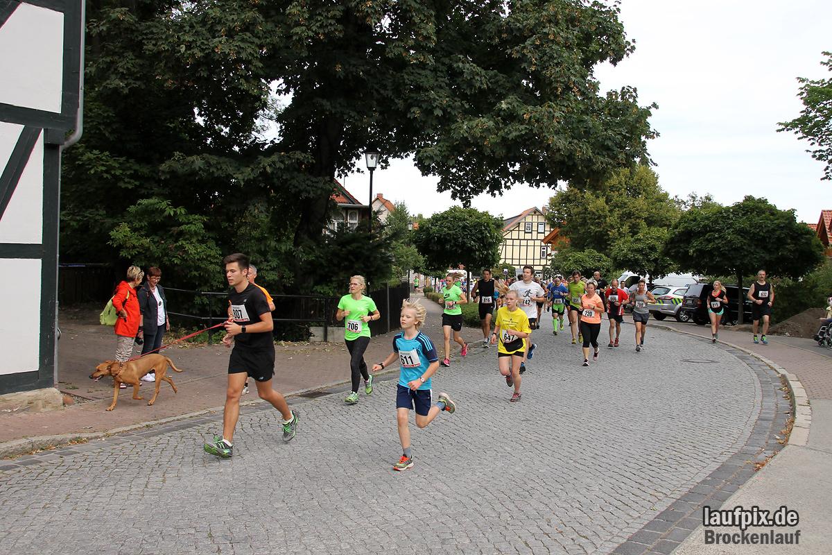Brockenlauf 9km Start 2016 Foto (62)