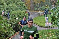 Rothaarsteig Marathon KM12 2017 - 19