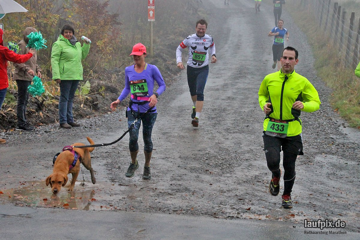 Rothaarsteig Marathon KM17 2017 - 119