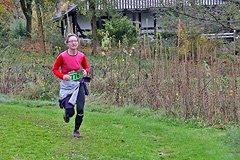 Rothaarsteig Marathon Ziel 2017 - 10