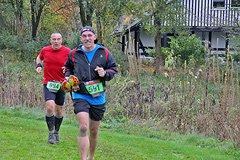 Rothaarsteig Marathon Ziel 2017 - 12