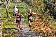 Rothaarsteig Marathon 2019