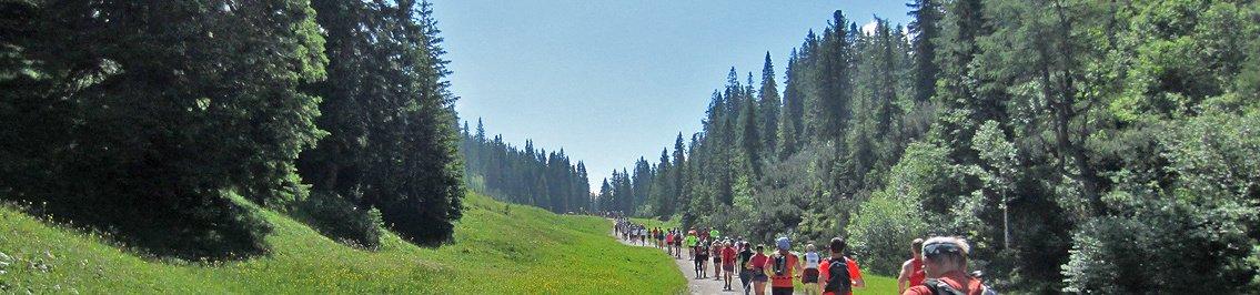 Bärenfels 50 km Trail 2017