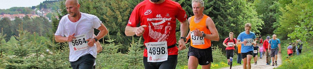 Löwenburglauf  2017