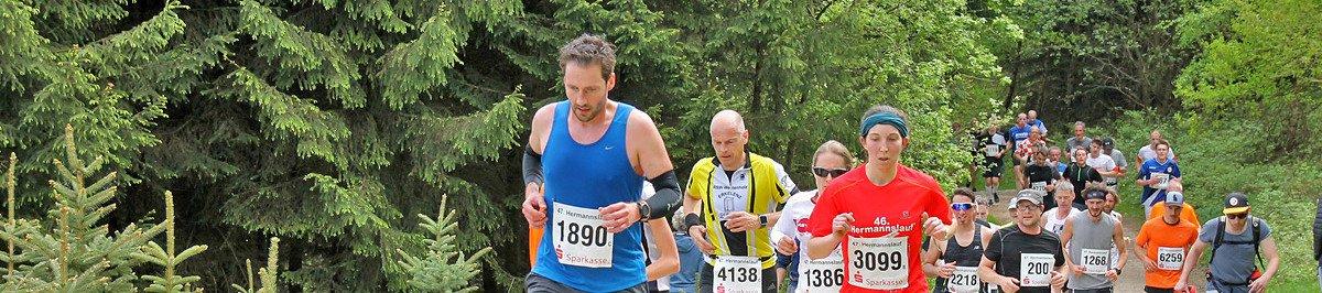 Vogelsberger Vulkan-Trail  2017