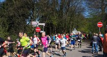 Lauf an der Wolf Bad Rippoldsau-Schapbach 2017